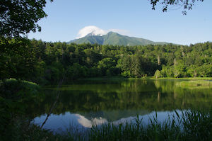 姫沼から見た利尻富士