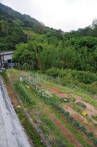 ファミリー農園